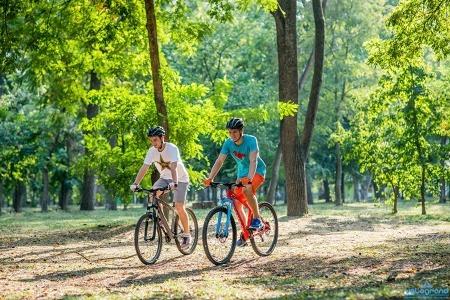 Выбрать правильный горный велосипед сложно…но можно