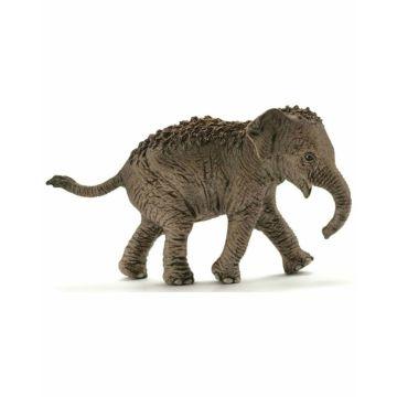 Азиатский слон детёныш идёт Schleich