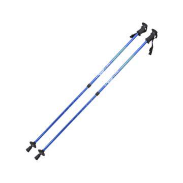 Палки для скандинавской ходьбы TechTeam Yeti 110-135 см (blue)