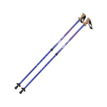 Палки для скандинавской ходьбы TechTeam Nordic 110-135 см (blue)