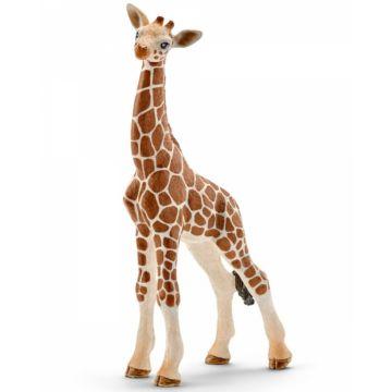 Детёныш жирафа Schleich