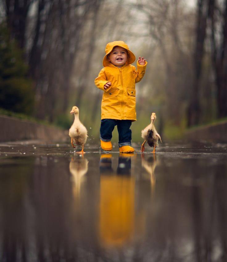 мальчик в жёлтом дождевике и с уточками